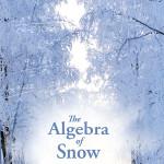 cover for novel algebra of snow